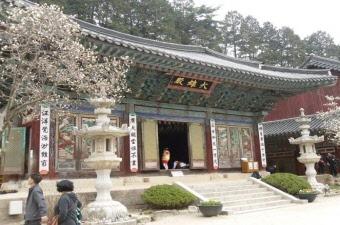 東鶴寺(トンハクサ) | 韓国忠清道観光スポット、韓国忠清道の寺院・聖堂・教会・宗教ご紹介ならハナビツアー。